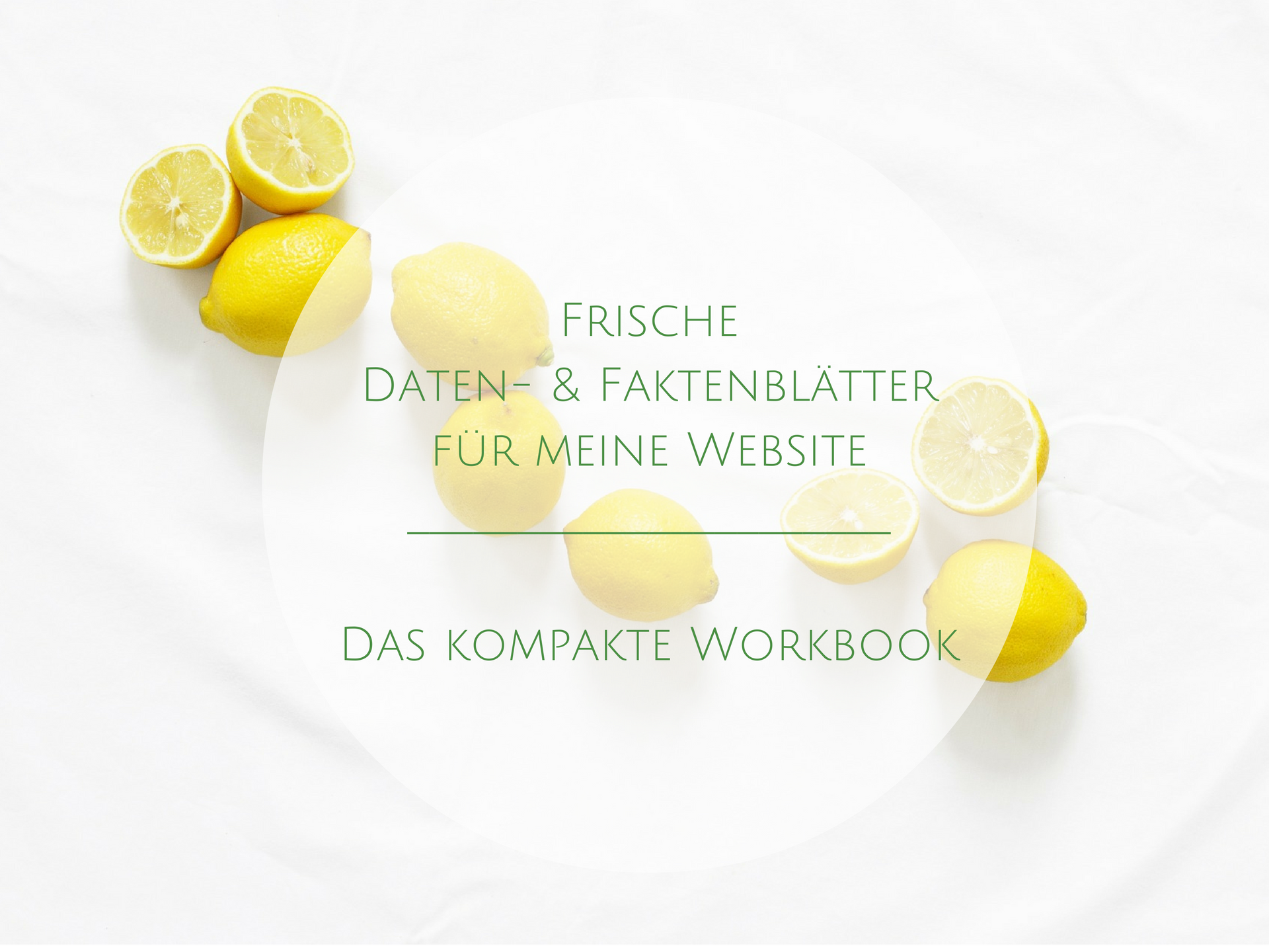 Ihr Workbook zum Download